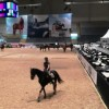 Klart for Kingsland Oslo Horseshow